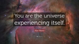 You Are The Universe Experiencing Itself